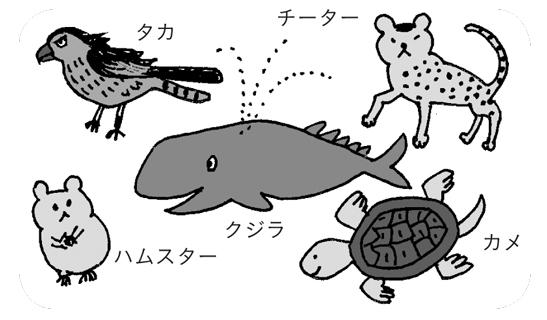 5種類の動物のアクティビティのイラスト