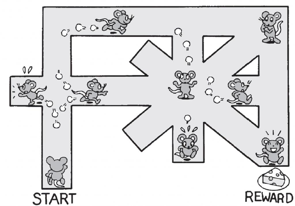 マウスが迷路を学習するイメージイラスト