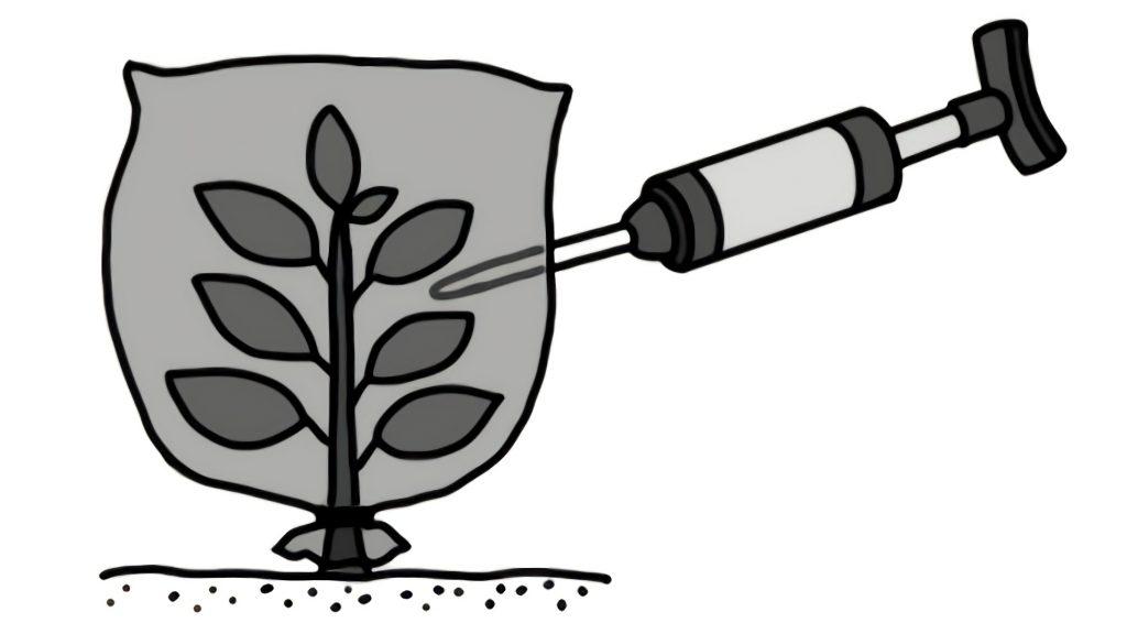 黒い袋をかぶせた植物を気体検知器で調べている様子