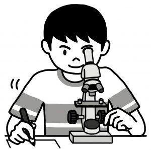 顕微鏡で観察する子