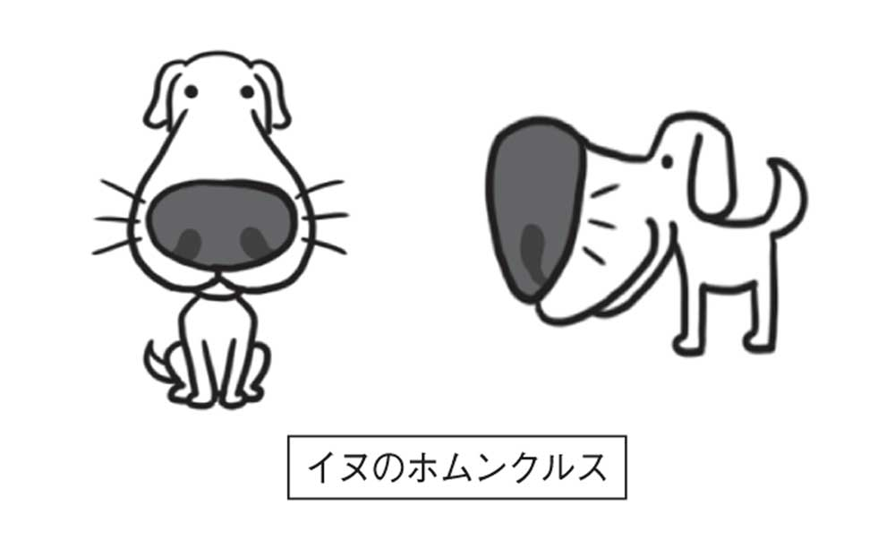 犬のホムンクルス
