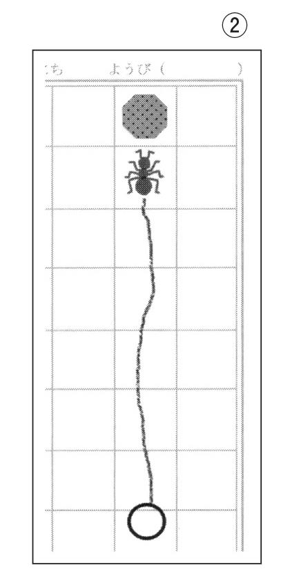 ノートにアリの軌道を書き入れる(アリはまっすぐ進む)