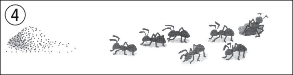 アリの挿絵