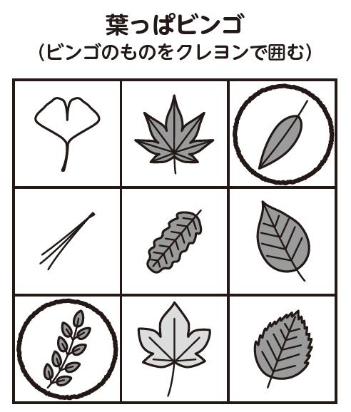 葉っぱビンゴ