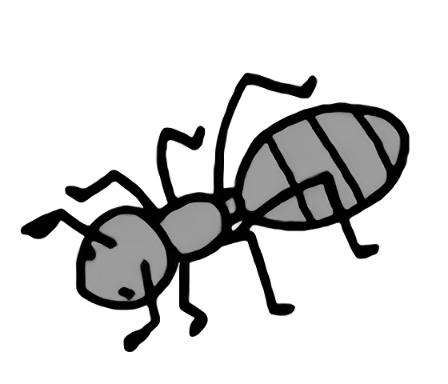 アリのスケッチ
