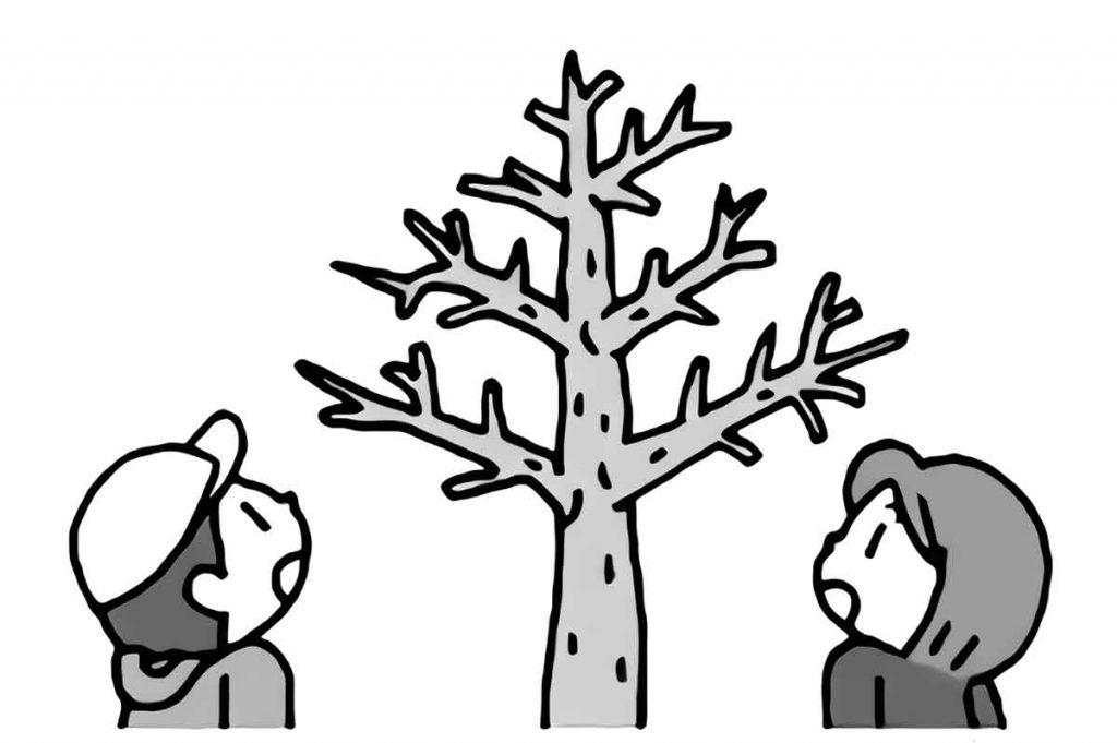 冬の木を見ている子供