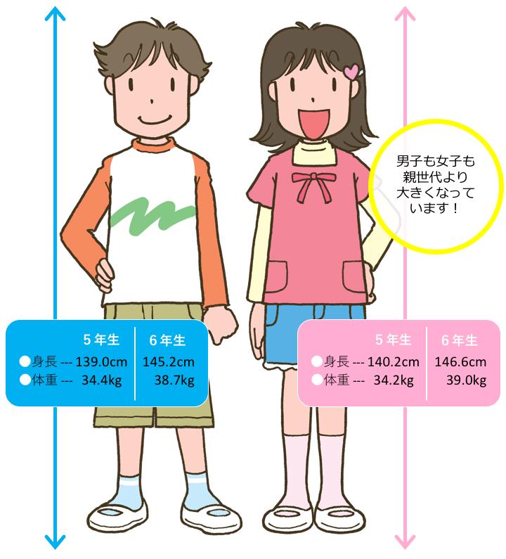 5・6年生 男女の身長と体重比較(イラスト)