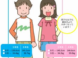 5・6年生男女の身長体重(イラスト)