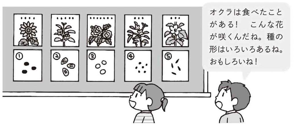 その植物について知っていることを発表させる