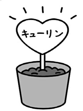 「キューリン」の名札を刺した野菜の鉢