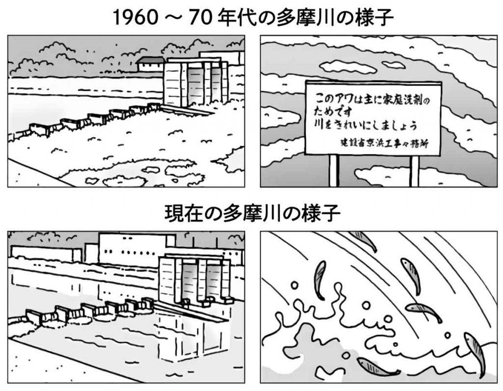 昔と今の多摩川の様子