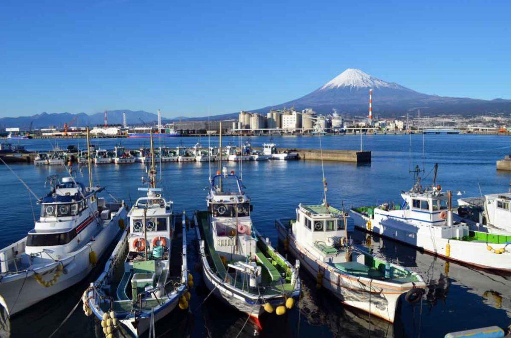 小5社会「水産業のさかんな地域」指導アイデア