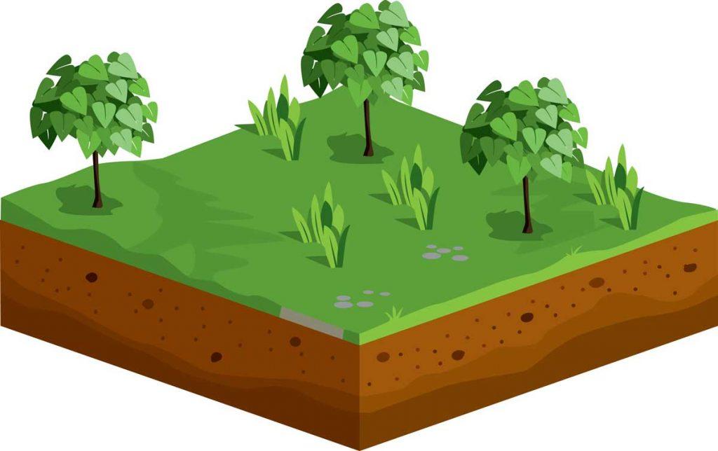 小6理科「土地のつくりと変化①」指導アイデア