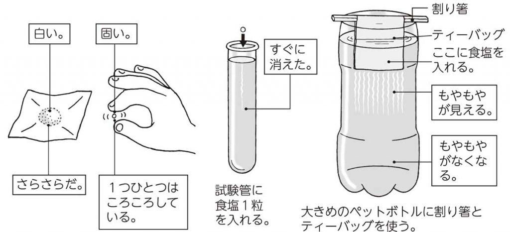 食塩が水に溶ける様子の観察