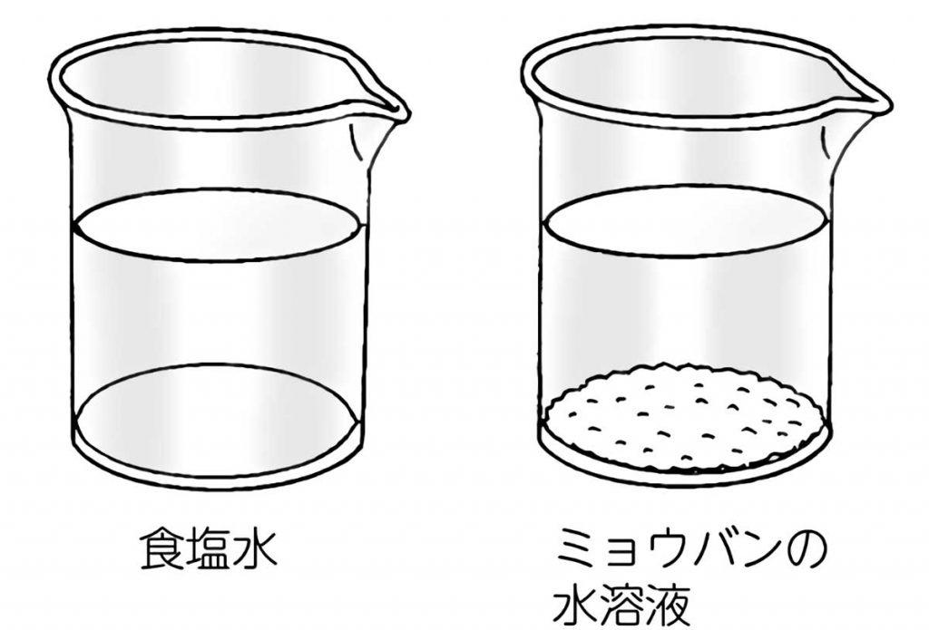 温度を上げて溶ける量が変化するのかについて調べた水溶液(食塩&ミョウバン)