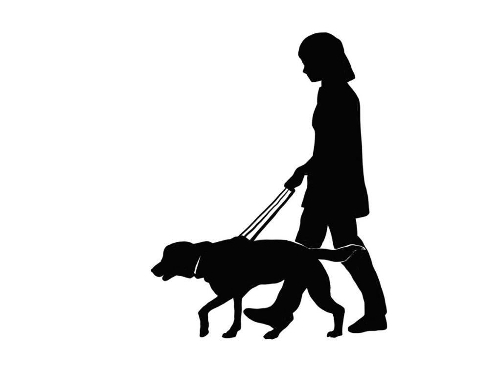 小3道徳「盲導犬サーブ」指導アイデアのイメージイラスト