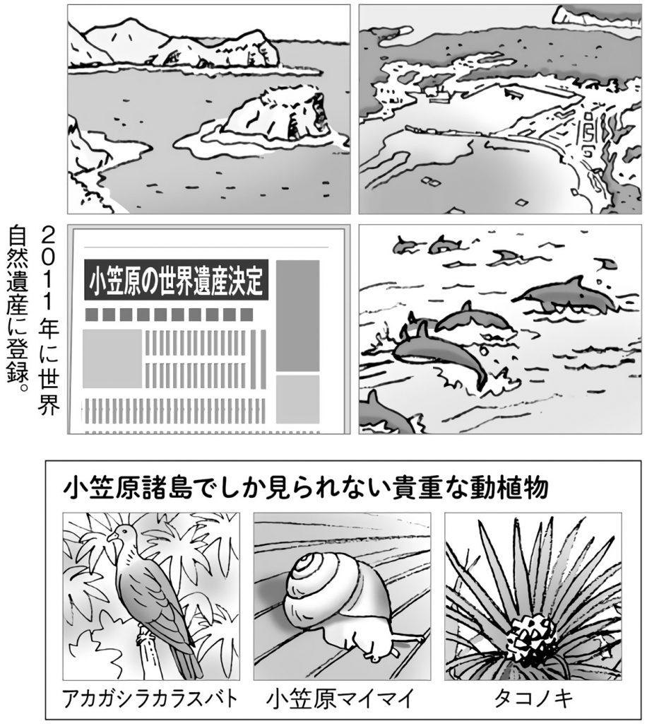 小笠原諸島に関する様々な記事