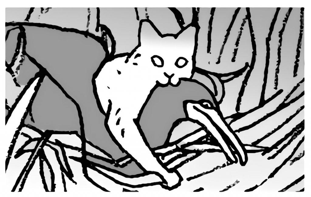 貴重な鳥を食べる野生化したネコ