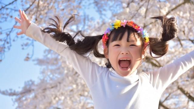 桜の下でばんざいをする子供