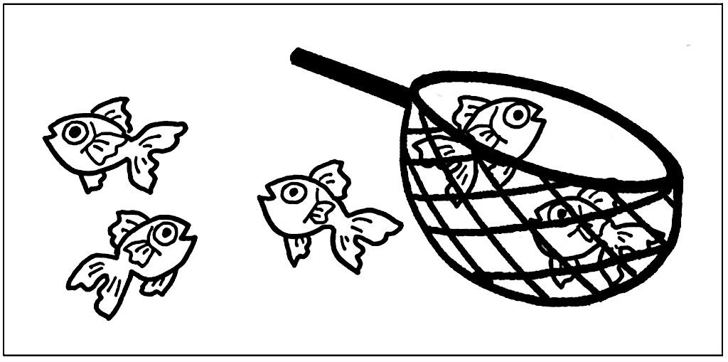 5匹の内2匹の金魚が網に入っている様子