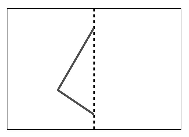 半分に折った線対称の図形を広げたところ