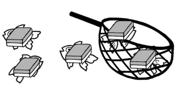 5つのブロックのうち2つが網に入れられている様子