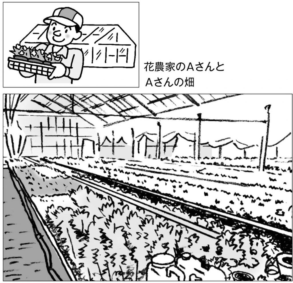 花農家のAさんとAさんの畑