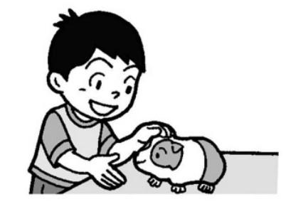 モルモットを触る子供