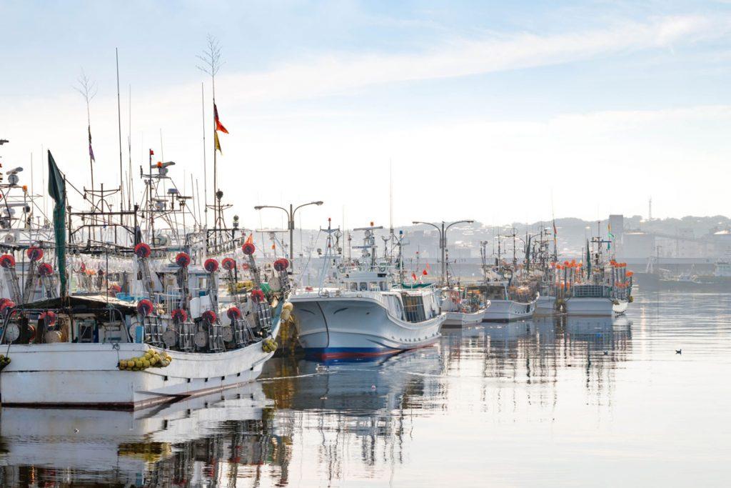 小5社会「水産業の盛んな地域」指導アイデア