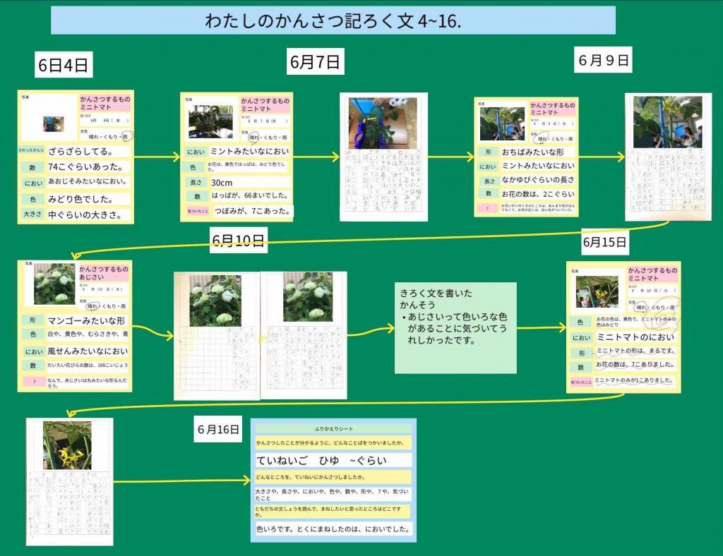 観察記録文のデジタルポートフォリオ