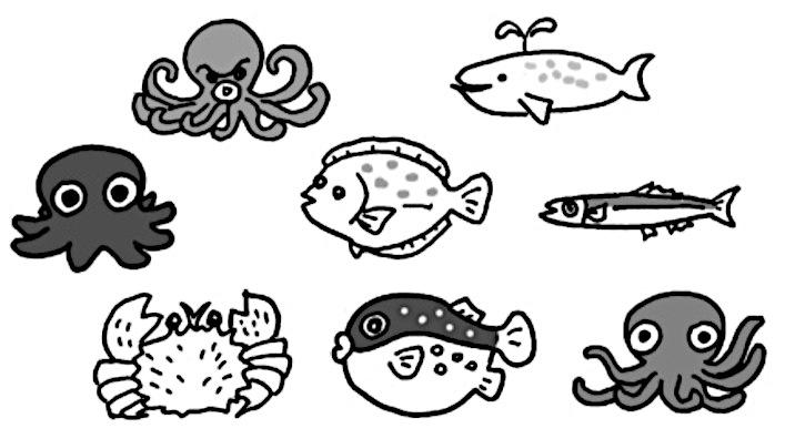 8匹の魚の絵