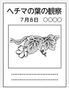 記録には観察する植物の写真を貼っておく