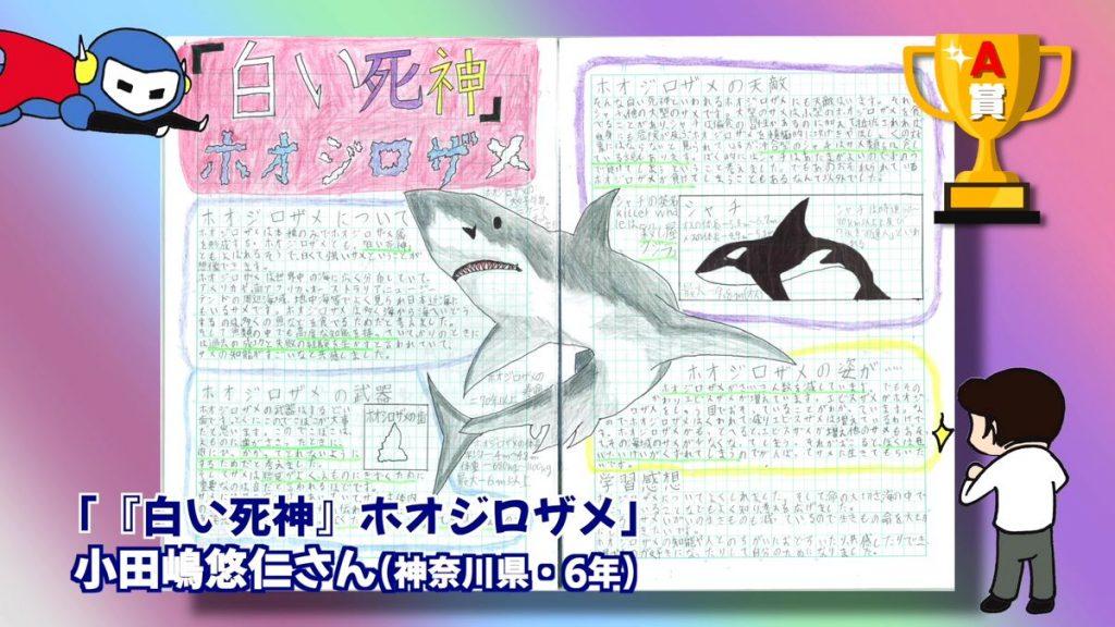 「白い死神」ホオジロザメ